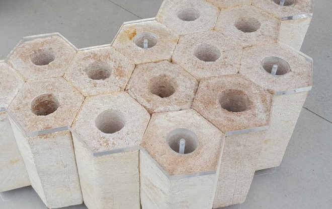 Канадские исследователи используют строительные блоки из грибов