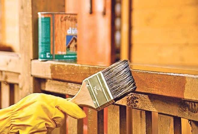 защиты древесины дома из дерева
