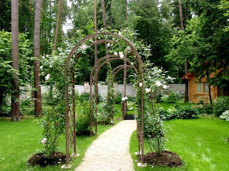 ТОП-5 идей арки для сада