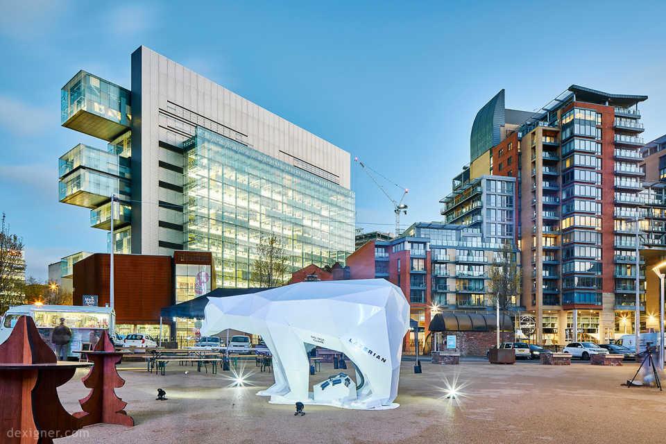 В Манчестере гостит «звездный» белый медведь