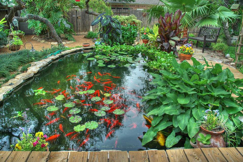 Садовый пруд на дачном участке