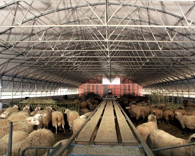 Стальные конструкции в сельском хозяйстве