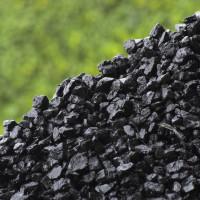 Уголь для отопления дома: как выбрать? Характеристики и виды угля