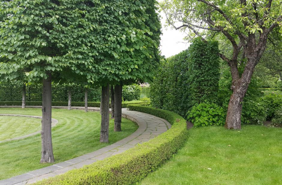 Газозащитная функция озеленения