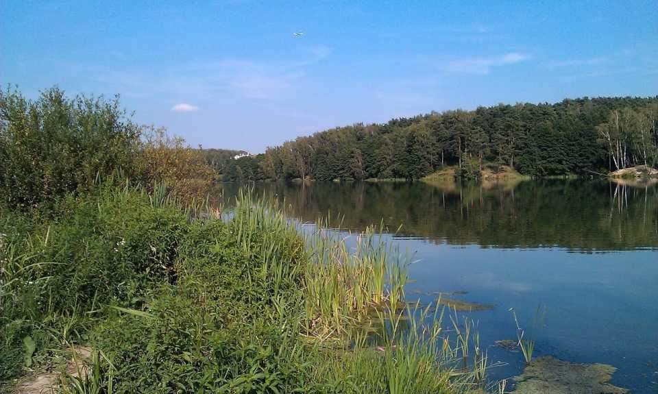 Река Купелинка