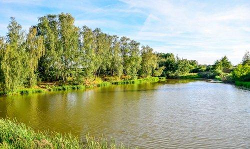 """Верхний Ащеринский пруд расположен рядом с ЖК """"Новая Развилка"""""""